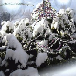 Kellemes-Karácsonyi-Ünnepeket