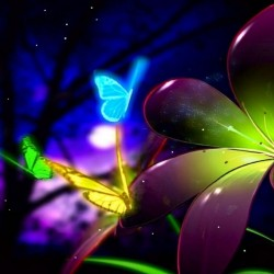 animated-butterfly-wallpaper