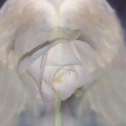Egy-eltávozott-Lélekért-2008-09-26